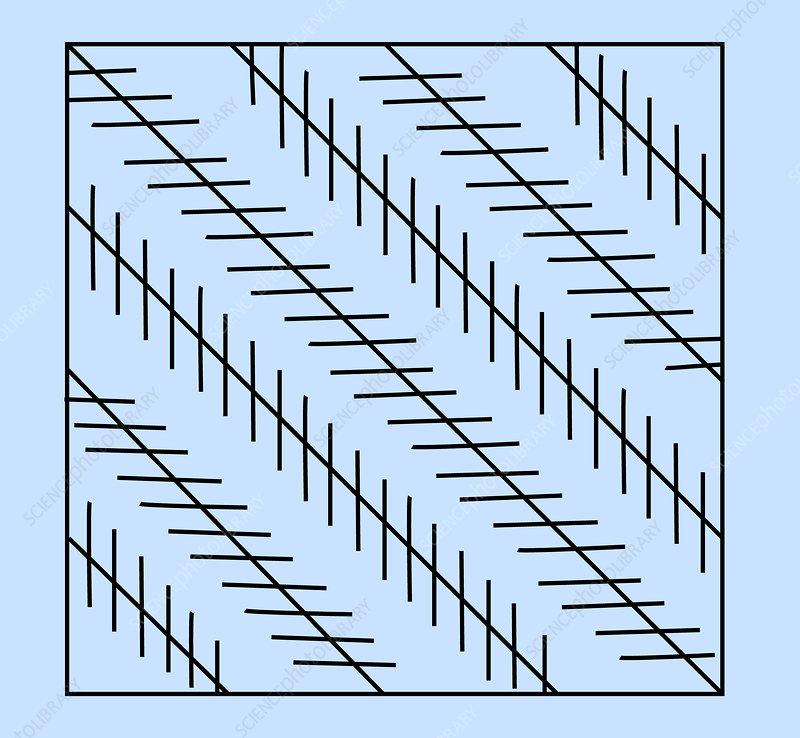Optical Illusion, Zollner, Illustration