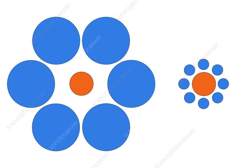 Optical Illusion, Ebbinghaus, Illustration