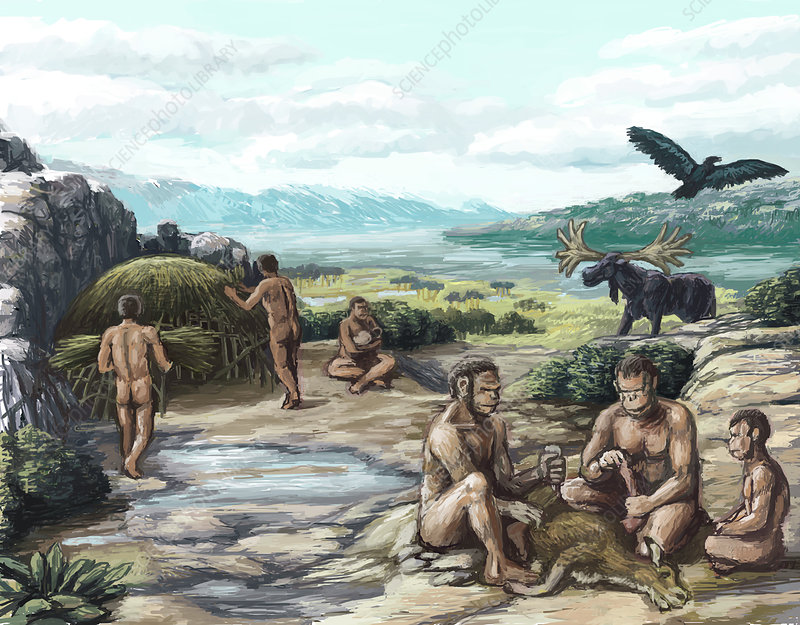 Quaternary Period, Hominid Settlement