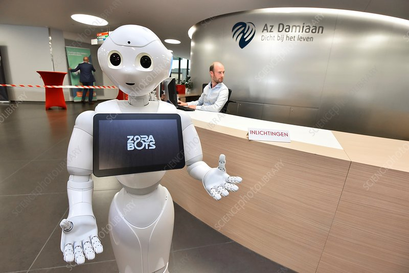 Pepper human interaction robot
