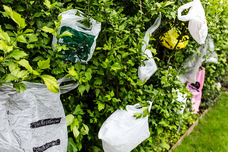 Discarded carrier bags