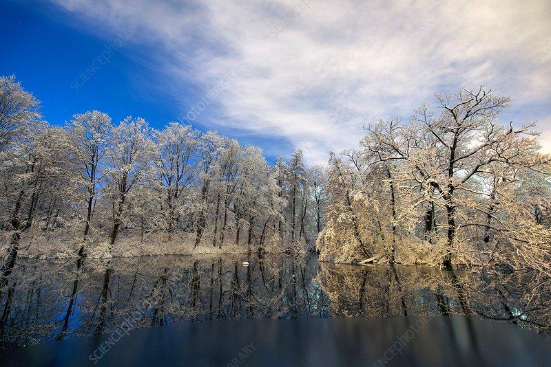 Winter landscape, Boston, USA