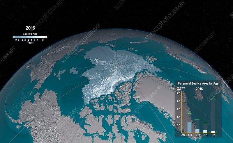 Age distribution of annual sea ice minimum, 2016