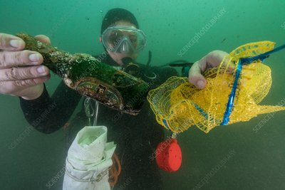 Diver with rubbish collected from seabed
