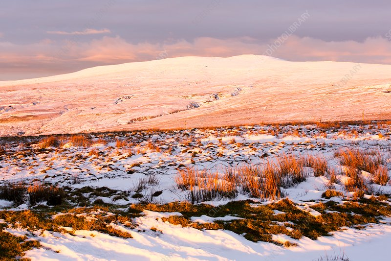 Black Fell, North Pennines, UK