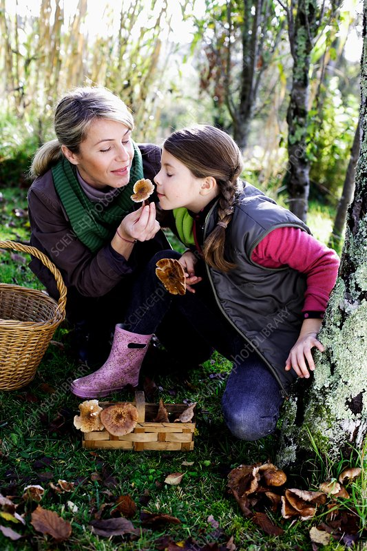 Mother and child picking mushrooms