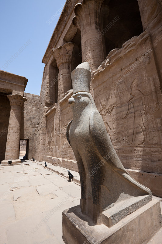 Horus Falcon Statue at Temple of Horus in Edfu