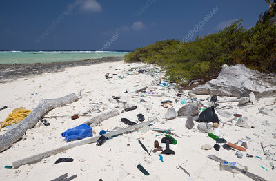 Rubbish of Civilisation washed up at Bikini Beach