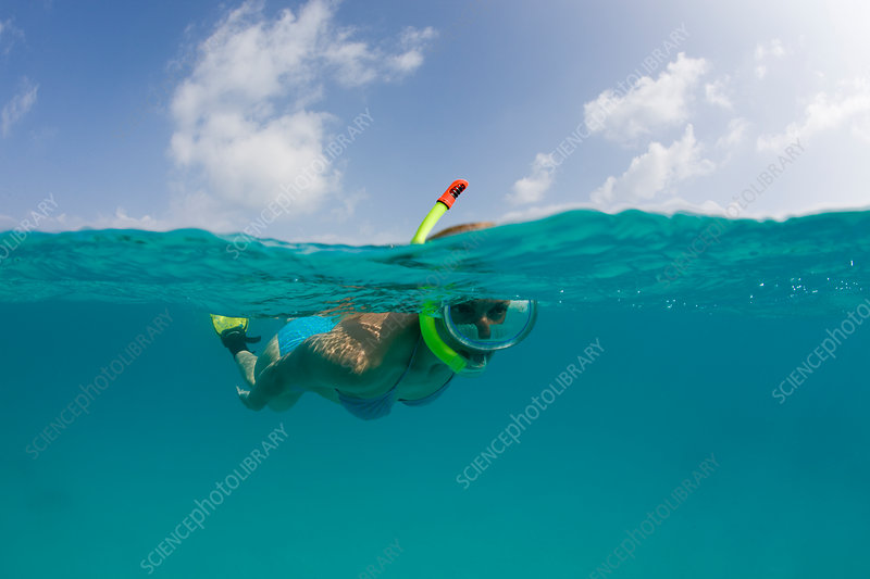 Snorkelling in turquoise Lagoon
