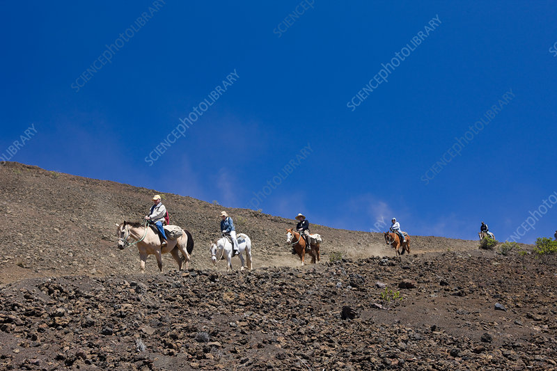 Horse Riding at Crater of Haleakala Volcano
