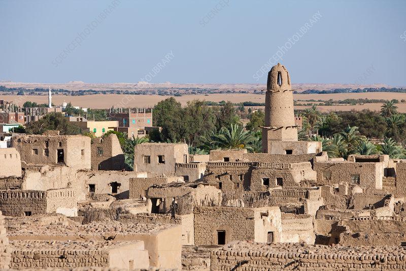 Old Town El Qasr in Dakhla Oasis