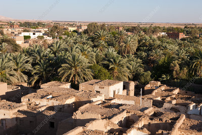 View on Old Town El Qasr in Dakhla Oasis