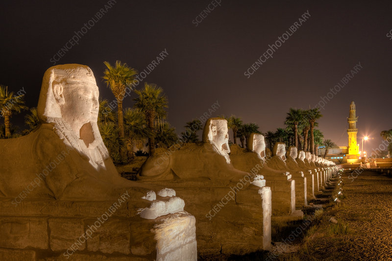 Alley of Sphinxes at Luxor Temple