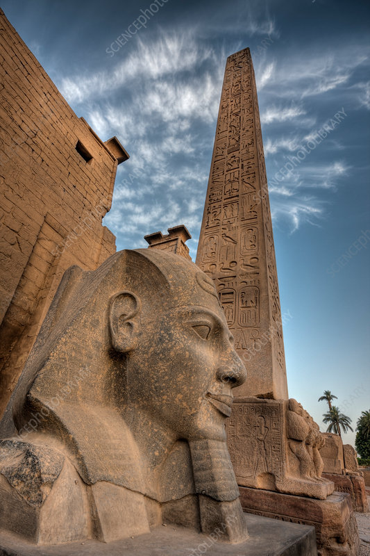 Head of Ramesses II Statue at Luxor Temple
