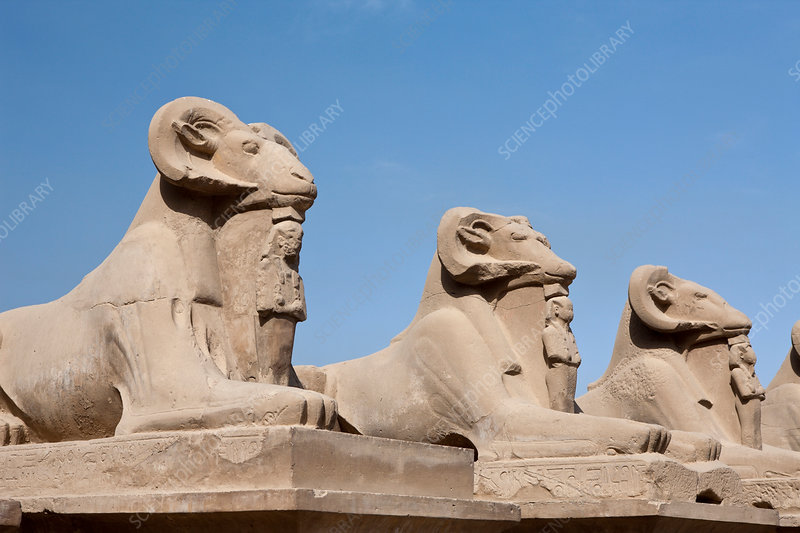 Row of Ram-headed Sphinxes at Karnak Temple