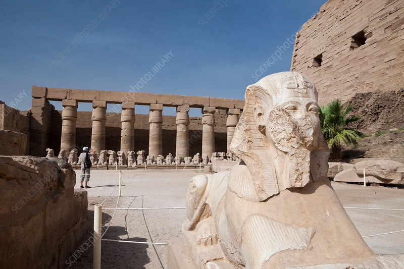 Sphinx at Karnak Temple