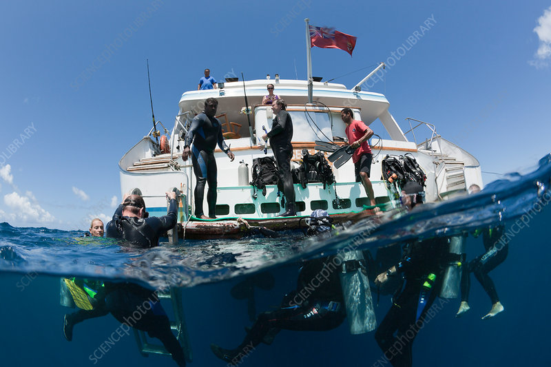 Diver ascending at Liveaboard Fiji Island Dancer