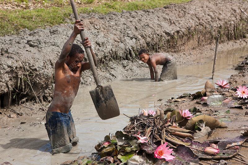 Dani Boys cutting a Canal