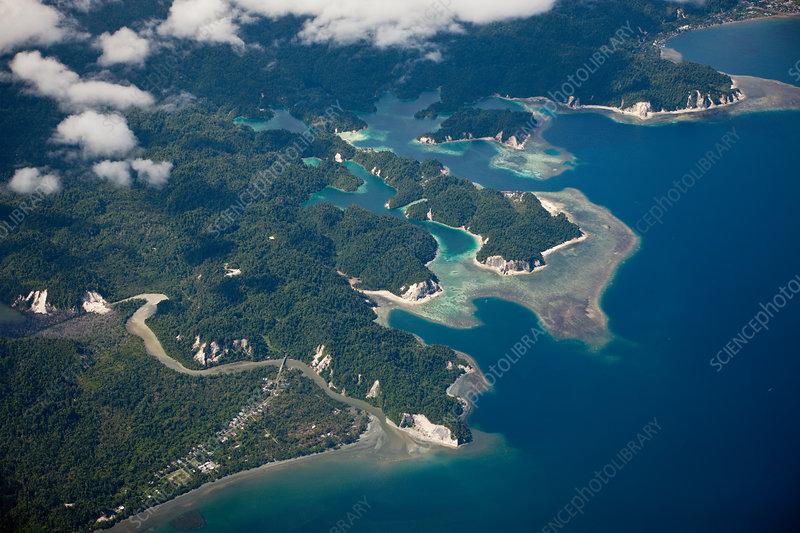 Coast of Cenderawasih Bay