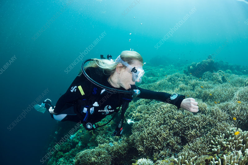 Scuba Diver check Time and Depth on Computer