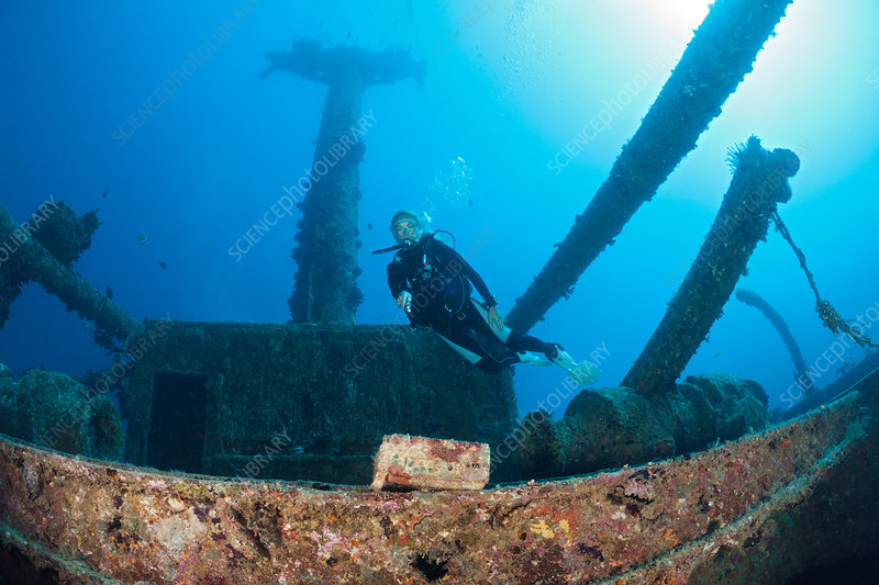 Scuba Diver discover Radio at Maldives Wreck