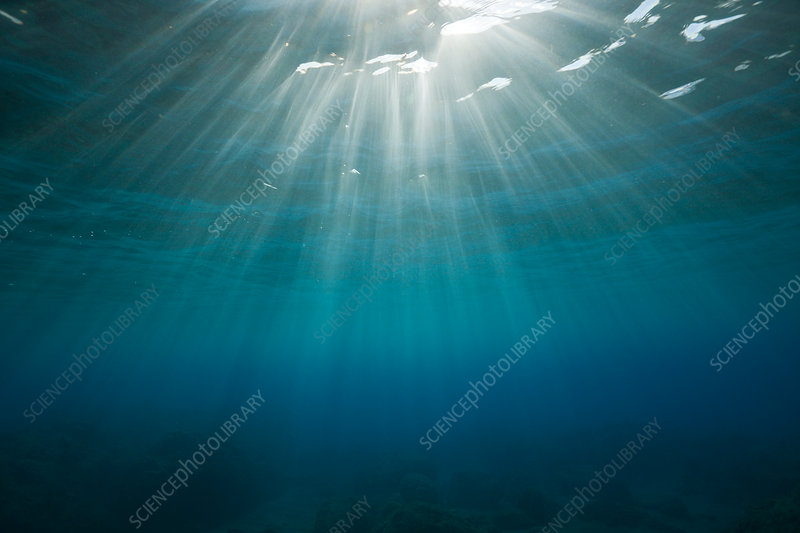 Sunbeams filtering through Water Surface