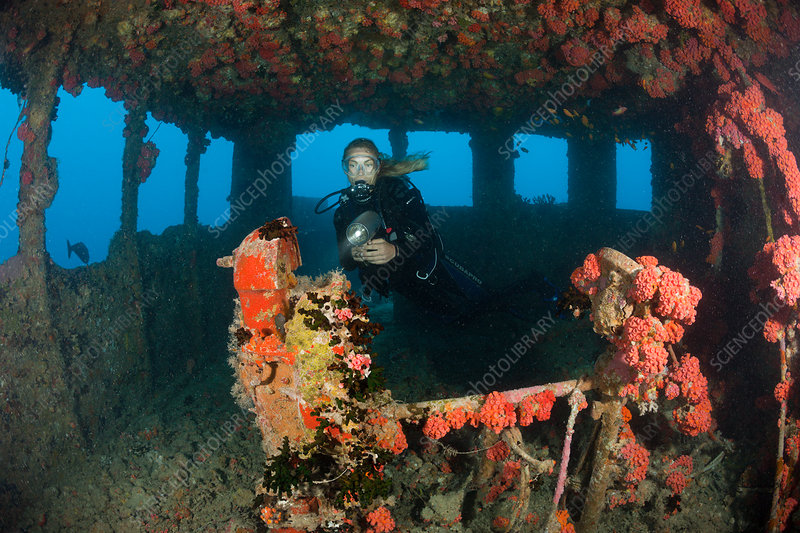 Diver inside Bridge of Maldives Victory Wreck