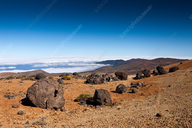 Teide Eggs in Teide National Park