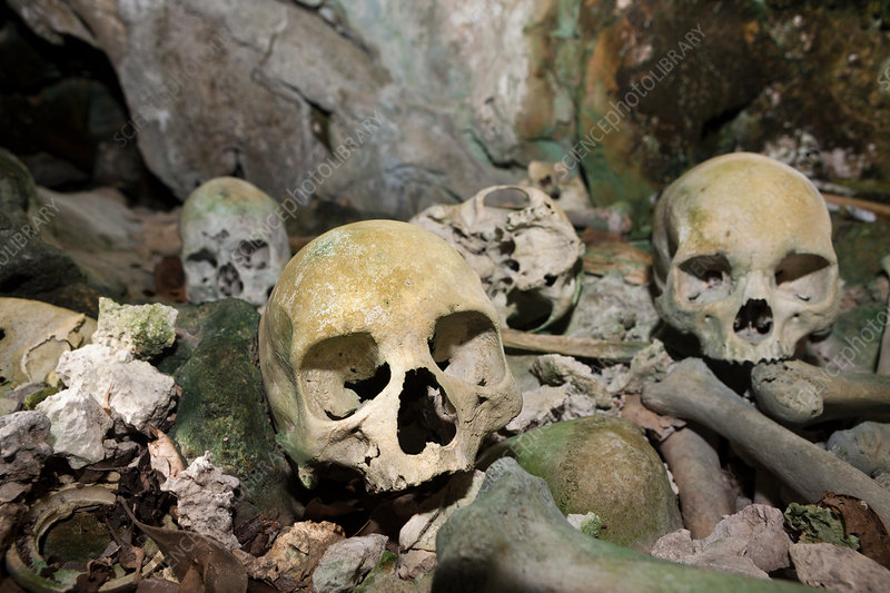 Old Skulls hidden in Rock Islands near Malwawa