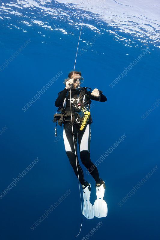 Diver doing Safety Stop