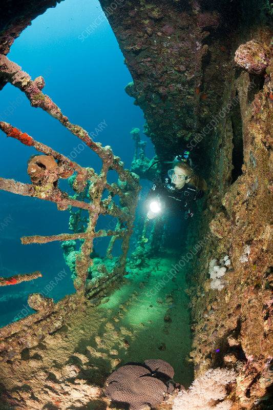 Scuba Diver at Umbria Wreck
