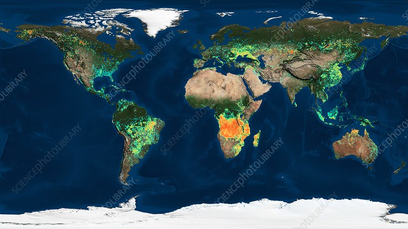 Global burned areas, satellite map