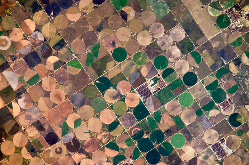 Centre pivot irrigation, USA, ISS image
