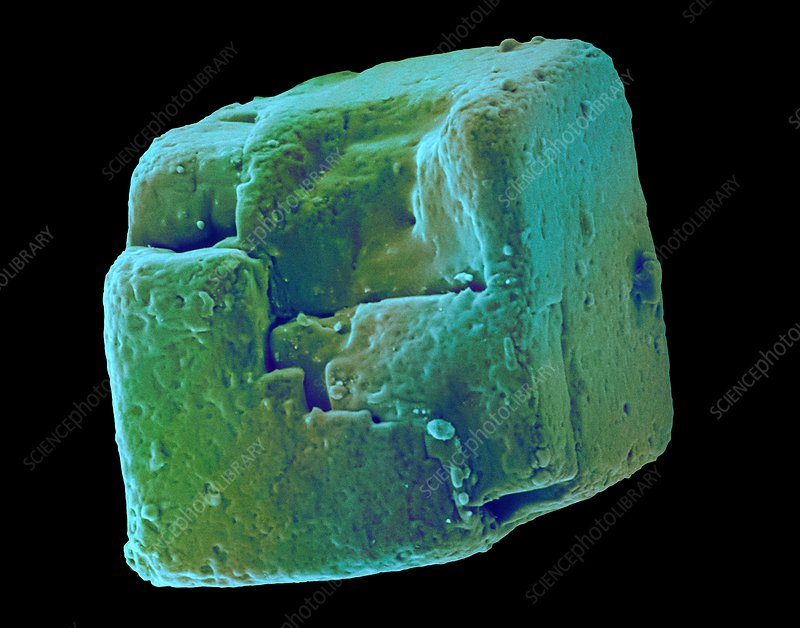 Table salt crystal (NaCl), SEM