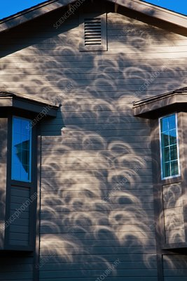 Eclipse shadows on a wall