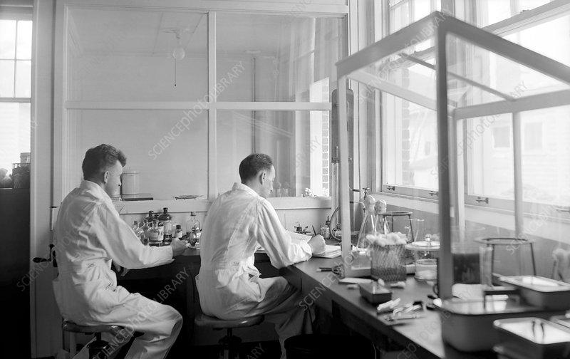 Rocky Mountain Laboratory researchers, 1938