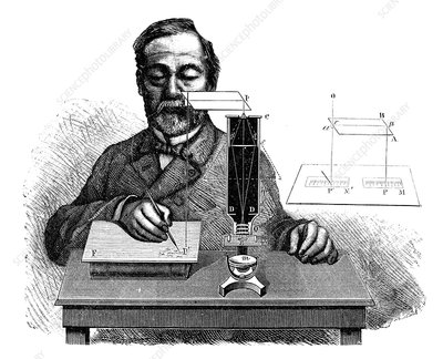 Microscopy observations, 19th century