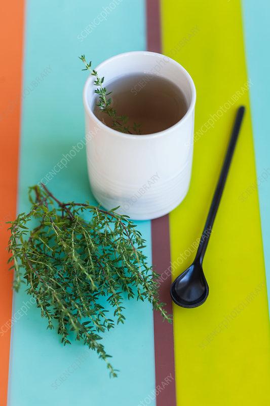 Herbal tea of thyme