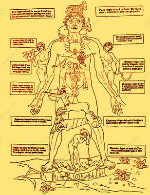 Zodiac Man, Medical Astrology
