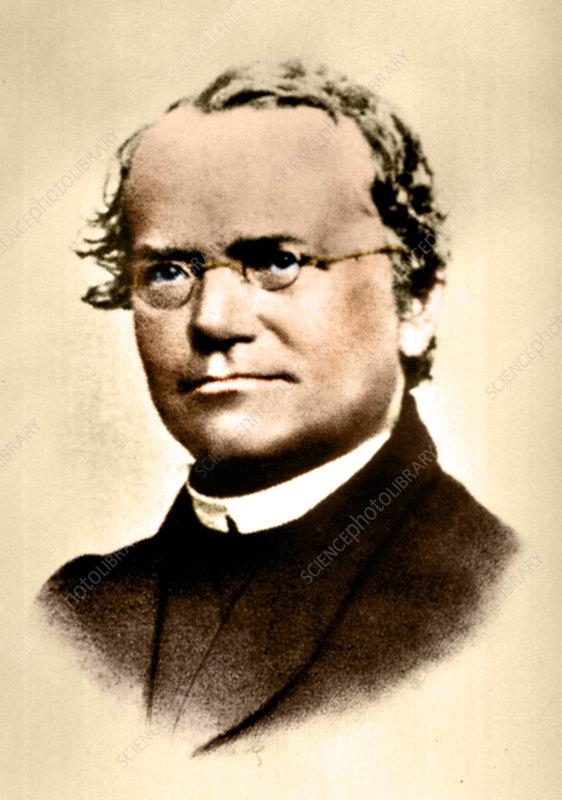 Gregor Johann Mendel gained fame as founder of the modern Science of Genetics