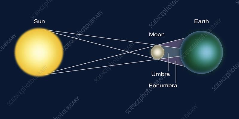 Solar Eclipse  Diagram - Stock Image - C033  4584