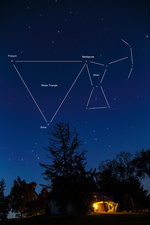 Orion, Betelgeuse, Procyon, and Sirius