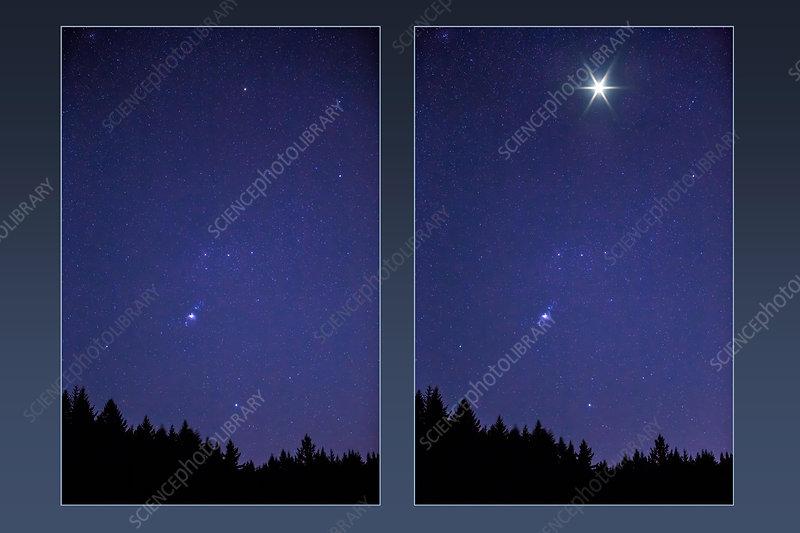 Supernova Orion