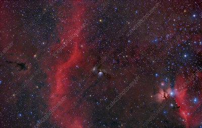 Barnard's Loop, M78, and Horsehead Nebula