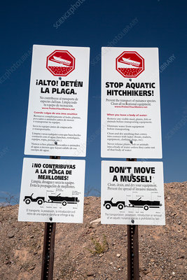Warning against transporting invasive mussels, Lake Mead, US