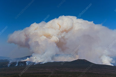 Forest Fire near Crater Lake, OR