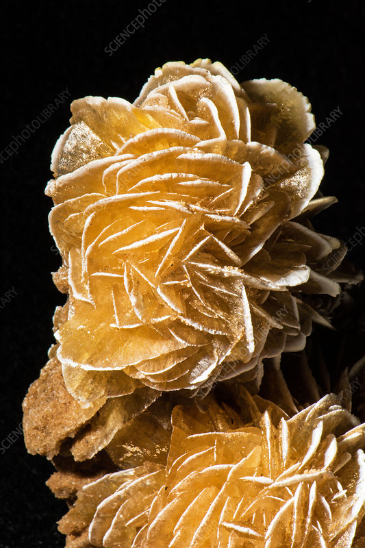 Selenite Desert Rose