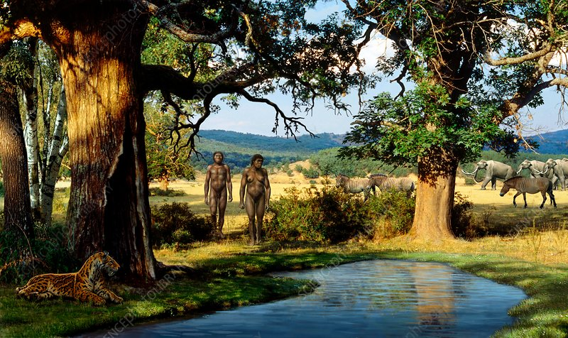 Homo georgicus at Pleistocene waterhole