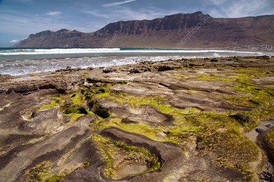 Volcanic beach and cliffs, Lanzarote, Canary Islands