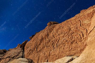 Atacama llama rock art in moonlight
